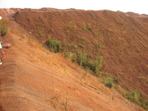 The slope is covered with coir mat