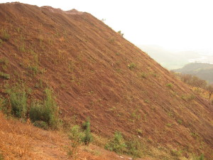 Eco-restoration with coir matting in Donimalai